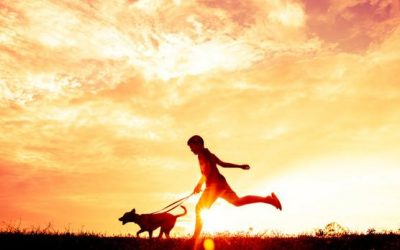 5 Fun, Dog-Friendly Activities You & Your Dog Must Do This Summer