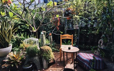 5 Easy Ways To Transform Your Yard Into An Outdoor Living Space