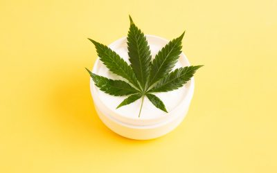 Everything You Need To Know About Hemp Cream for Pain
